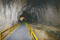 Entrance to the Ialomita Cave. Royalty Free Stock Photo