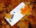 Envelope on autumn foliage  Royalty Free Stock Images