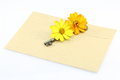 Envelope with key and flower pictured the Royalty Free Stock Image