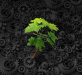 Environment and business concept with a background made of industrial gears cog wheels a determined green sapling tree Stock Photography