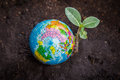 Environment conservation photo of tree world and color pencil for concept Stock Photo