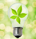 Environment friendly bulb Royalty Free Stock Images