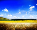 Environment peaceful meadow countryside cloudscape concept Royalty Free Stock Photography