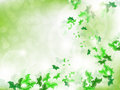 Environmental Background with green leaf butterflies Royalty Free Stock Image