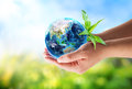 Environmental concept orient in hands Stock Photo