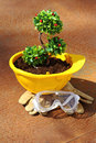 Environmental friendly green plant in yellow helmet on rusty background industry concept Stock Images