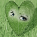 Environmental image with eyes in a heart shaped le of woman leaves pleading Royalty Free Stock Image