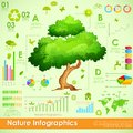 Environmental infographic illustration of tree in Stock Images
