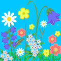 Eps vector illustration wild flowers see my other works in portfolio Stock Photos