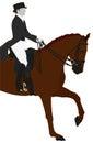 Equestrian Dressage Sport Royalty Free Stock Photo
