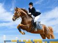 Equestrian jumper Stock Photo
