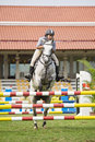 Equestrian Show Jumping Stock Photos