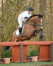 Equestrian sport horse jumping harry meade and wild lone rd advanced intermediate section l gatcombe trials Stock Photo