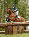 Equestrian sport horse jumping paul sims on sam i am iii rd int sec i gatcombe Royalty Free Stock Photos