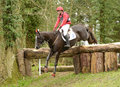 Equestrian sport horse jumping paul tapner on up in the air st int sec g gatcombe Stock Image
