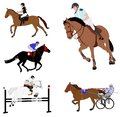 Equestrian sports. dressage,jump show,gallop,harness racing