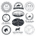 Equine logo vintage perfect horse related business symbols with antique texture premium quality ranch or equestrian business Stock Photography