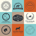 Equine logo vintage vector perfect horse related business symbols with antique texture premium quality ranch or equestrian Stock Photo