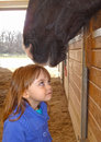 Equine love starting early Royalty Free Stock Photo