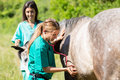 Equine veterinary great performing a scan to a young mare Stock Photography
