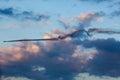 Equipe el bravo aviones x sukhoi los m Imagen de archivo libre de regalías