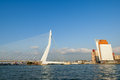 Erasmus bridge and kpn tower in rotterdam netherl the swan from new meuse river the netherlands Stock Photography
