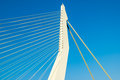 Erasmus bridge rotterdam netherlands detail of the asymmetrical pylon of the the swan in the city of the Royalty Free Stock Image