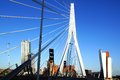 Erasmus Bridge and Rotterdam port. Rotterdam Royalty Free Stock Photo