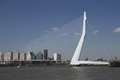 The erasmusbrug famous rotterdam landmark bridge also called swan Royalty Free Stock Image