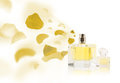 Erfume bottle spraying rose petals perfume colorful Royalty Free Stock Image