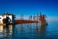 Erhai lake the tree in yunnan china Stock Image