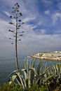 Ericeira Village Royalty Free Stock Images