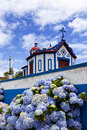 Ermida de monte santo sao miguel azores hydrangea flowers in front of the chapel of at agua pau island Royalty Free Stock Image