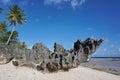 Eroded rock formation on beach french polynesia tropical atoll of tikehau tuamotu archipelago pacific ocean Royalty Free Stock Photos