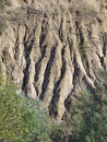 Eroded soil Stock Images