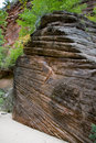 Erosion of Rock in Zion Nation Stock Photography
