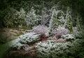 Erster Schnee im mystischen Garten Lizenzfreies Stockfoto