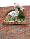 Escape over brick wall Royalty Free Stock Photo