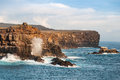 Espanola island galapagos rugged coastline of Royalty Free Stock Photo