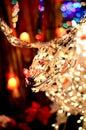 Esposizione della luce di rudolph red nosed reindeer christmas Fotografie Stock Libere da Diritti