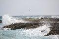 Espray del océano que se rompe a través de las rocas con los pájaros fauna en medio de las rocas cancun méxico Fotos de archivo libres de regalías