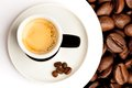 Espresso Cup with coffee been. Stock Photography