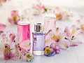 Essential aromatic oils bottles of surrounded by fresh flower Stock Images
