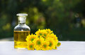 Essential floral oil. Flower elixir and fresh summer flowers. Spa and beauty care. Royalty Free Stock Photo