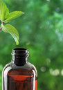Essential oil bottle Royalty Free Stock Photo