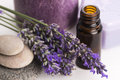 Essential oil and lavender flowers Royalty Free Stock Photo