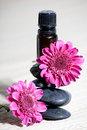 Essential oils and flowers Royalty Free Stock Photo