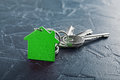 Estate concept with key, green keychain with house symbol, ecotechnologies