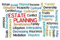 Estate planning word cloud on white background Royalty Free Stock Photography