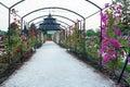 Esterhazy castle`s rose garden, Fertod Royalty Free Stock Photo